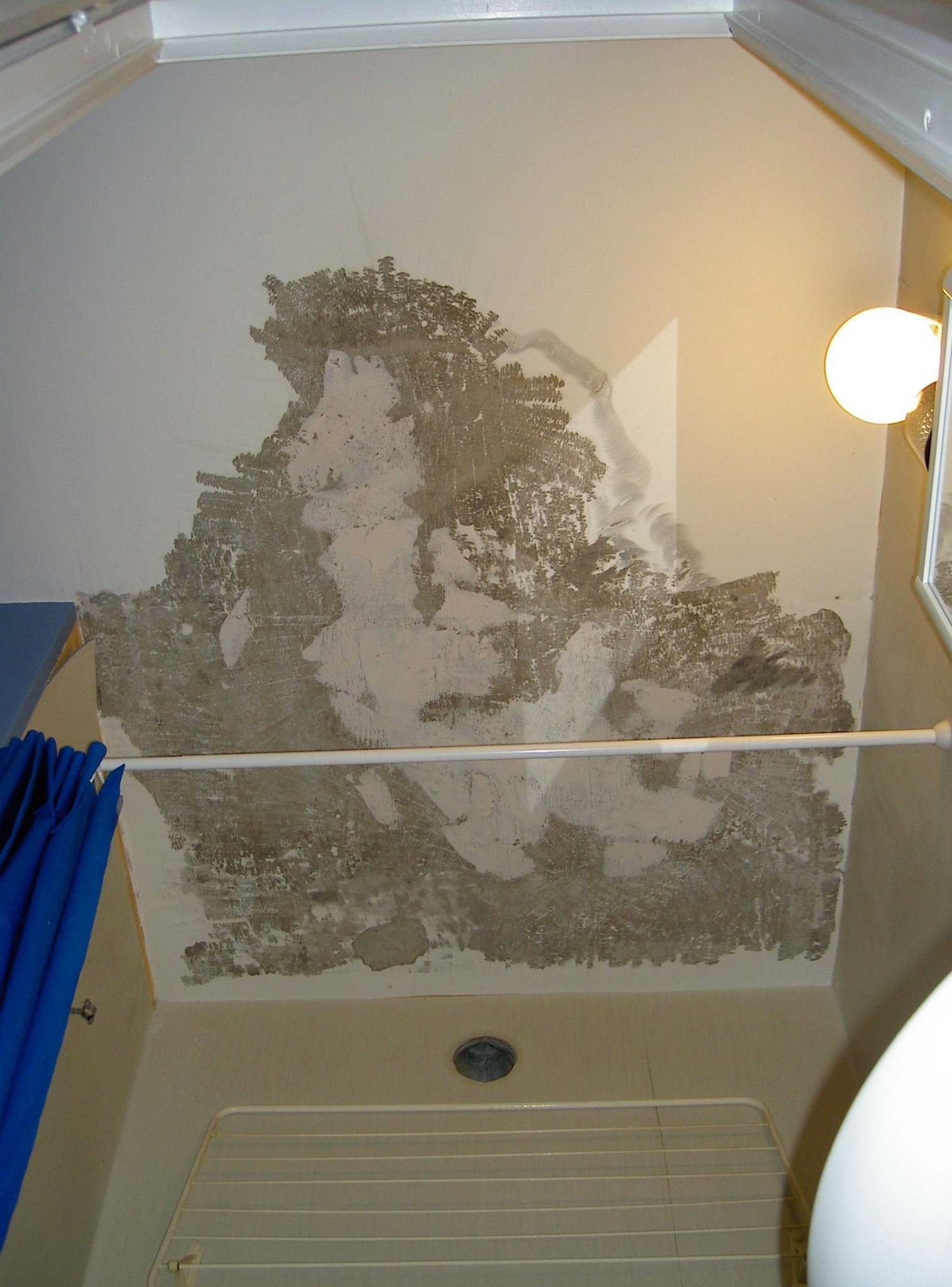 MÃ¥la tak i badrum